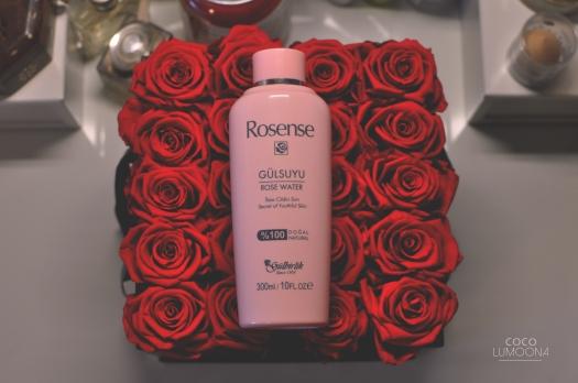 Rosen2LL